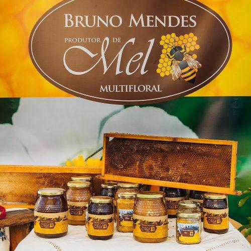 1062 - FAL 2021 Mel Bruno Mendes